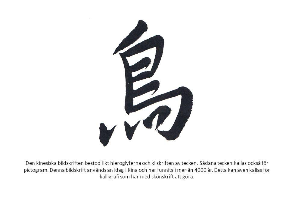 Den kinesiska bildskriften bestod likt hieroglyferna och kilskriften av tecken. Sådana tecken kallas också för pictogram. Denna bildskrift används än