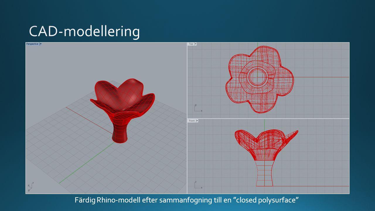 """Färdig Rhino-modell efter sammanfogning till en """"closed polysurface"""""""