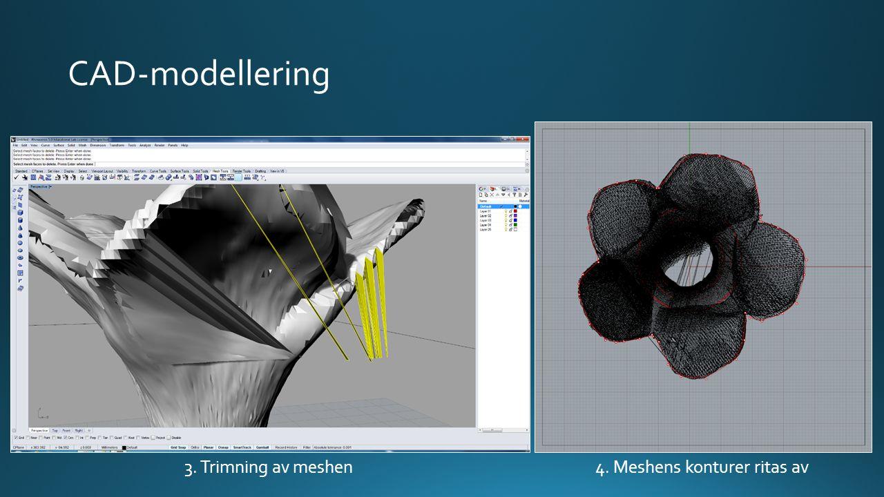 CAD-modellering 3. Trimning av meshen4. Meshens konturer ritas av