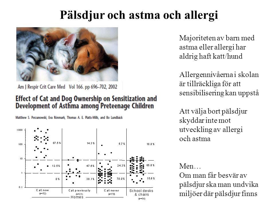 Majoriteten av barn med astma eller allergi har aldrig haft katt/hund Allergennivåerna i skolan är tillräckliga för att sensibilisering kan uppstå Att