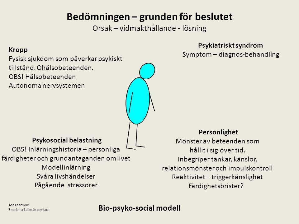 Bedömningen – grunden för beslutet Orsak – vidmakthållande - lösning Psykiatriskt syndrom Symptom – diagnos-behandling Kropp Fysisk sjukdom som påverk