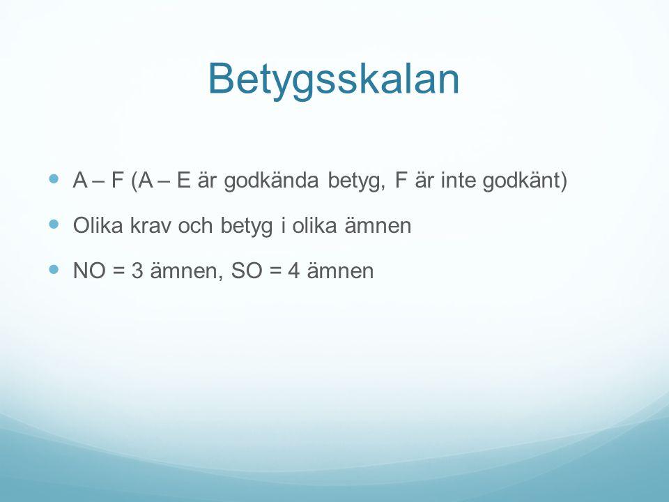 Betygsskalan A – F (A – E är godkända betyg, F är inte godkänt) Olika krav och betyg i olika ämnen NO = 3 ämnen, SO = 4 ämnen