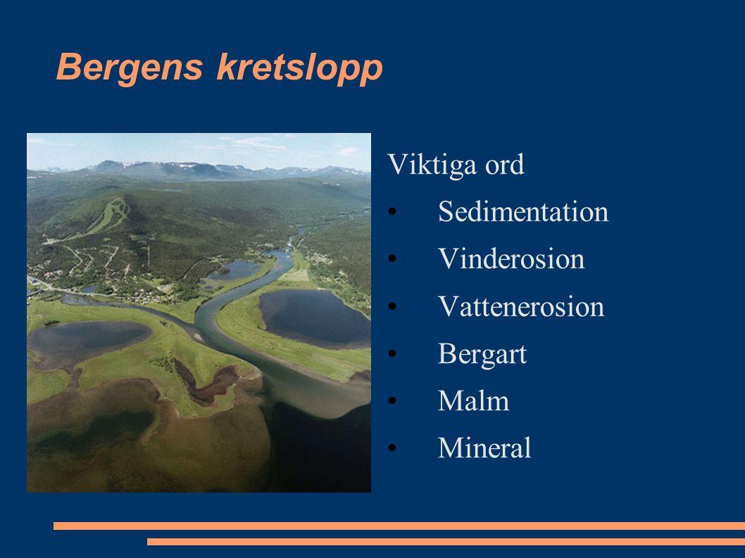 Bergens kretslopp Viktiga ord Sedimentation Vinderosion Vattenerosion Bergart Malm Mineral