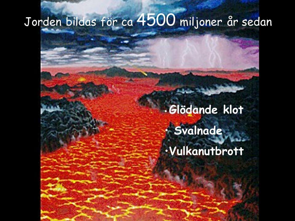 Jorden bildas för ca 4500 miljoner år sedan Glödande klot Svalnade Vulkanutbrott