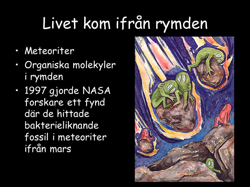 Livet kom ifrån rymden Meteoriter Organiska molekyler i rymden 1997 gjorde NASA forskare ett fynd där de hittade bakterieliknande fossil i meteoriter ifrån mars