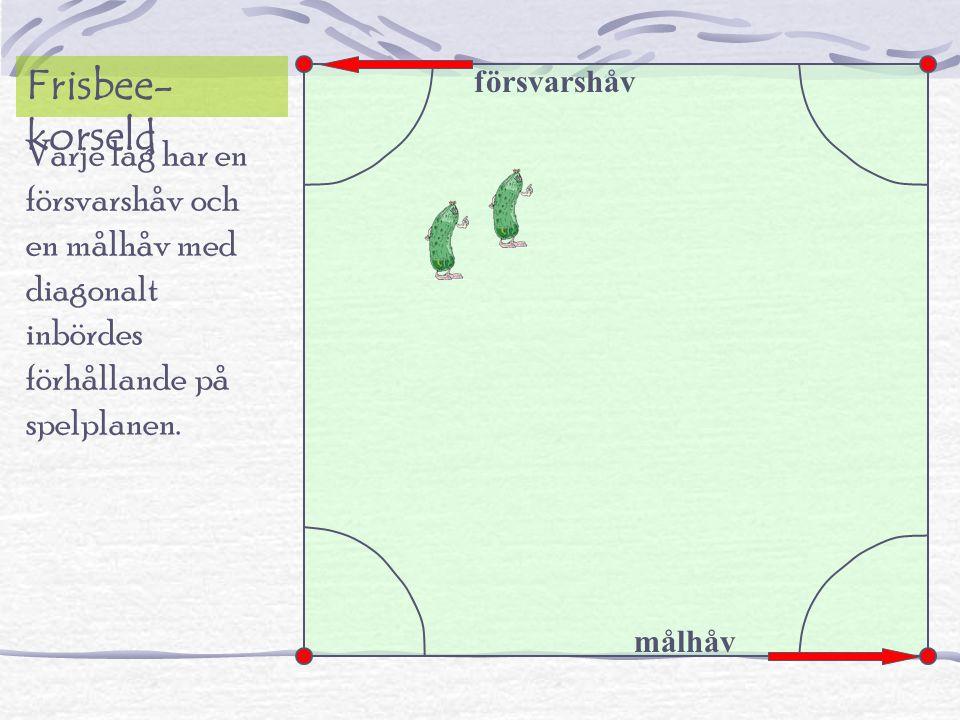 Varje lag har en försvarshåv och en målhåv med diagonalt inbördes förhållande på spelplanen.