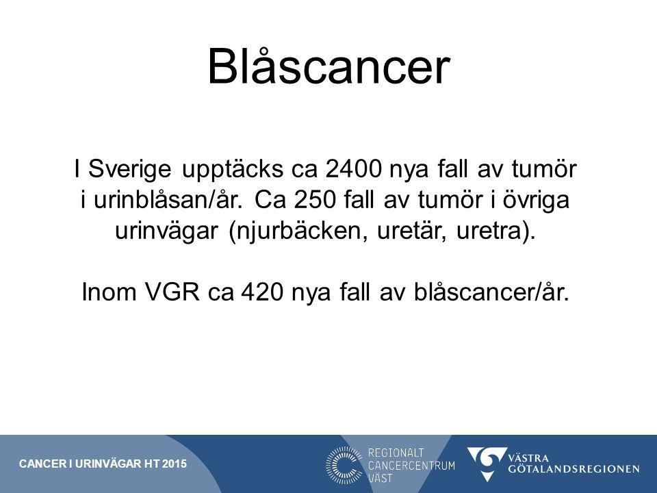 Blåscancer CANCER I URINVÄGAR HT 2015 I Sverige upptäcks ca 2400 nya fall av tumör i urinblåsan/år. Ca 250 fall av tumör i övriga urinvägar (njurbäcke