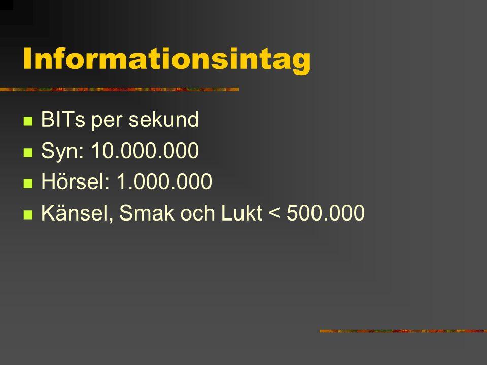 Informationsintag BITs per sekund Syn: 10.000.000 Hörsel: 1.000.000 Känsel, Smak och Lukt < 500.000