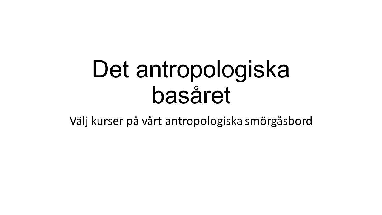 Det antropologiska basåret Välj kurser på vårt antropologiska smörgåsbord