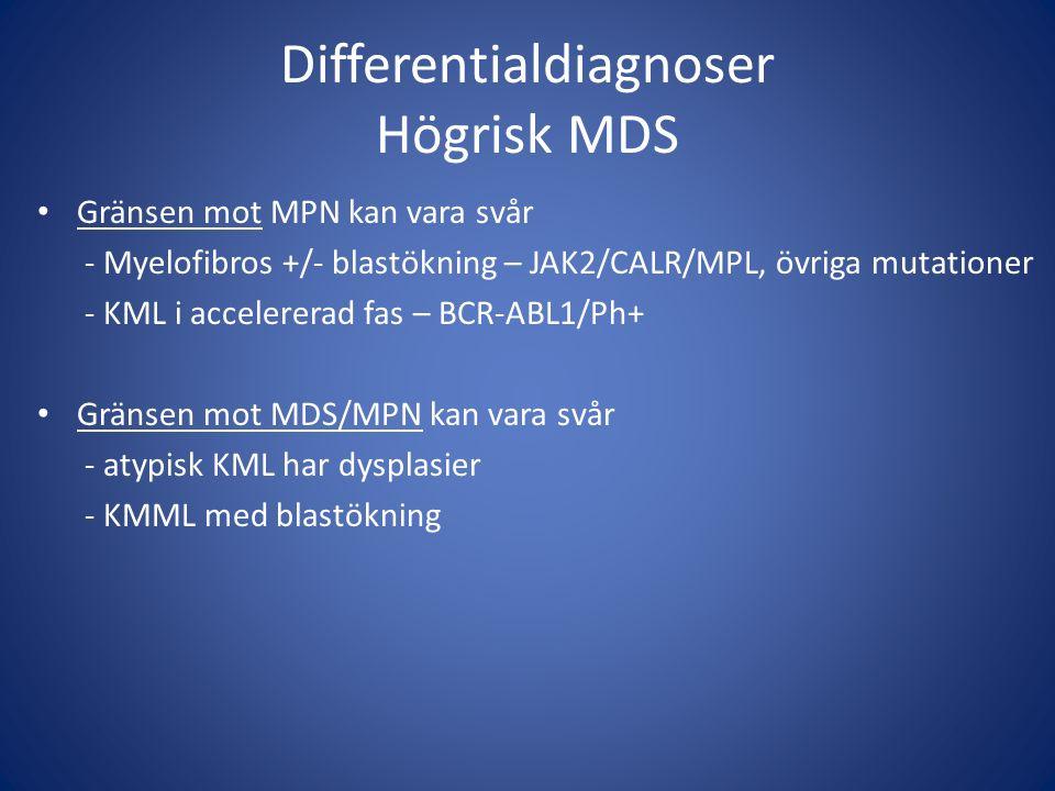 Differentialdiagnoser Högrisk MDS Gränsen mot MPN kan vara svår - Myelofibros +/- blastökning – JAK2/CALR/MPL, övriga mutationer - KML i accelererad f