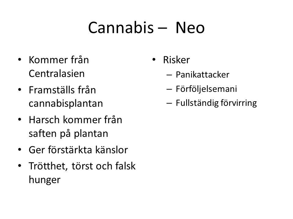 Cannabis – Neo Kommer från Centralasien Framställs från cannabisplantan Harsch kommer från saften på plantan Ger förstärkta känslor Trötthet, törst oc
