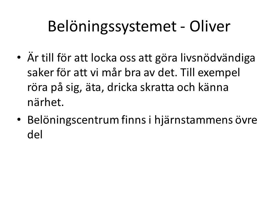 Belöningssystemet - Oliver Är till för att locka oss att göra livsnödvändiga saker för att vi mår bra av det. Till exempel röra på sig, äta, dricka sk