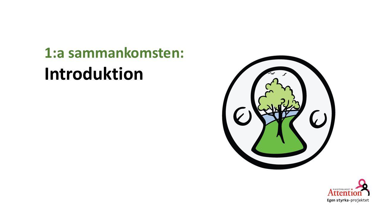 1:a sammankomsten: Introduktion