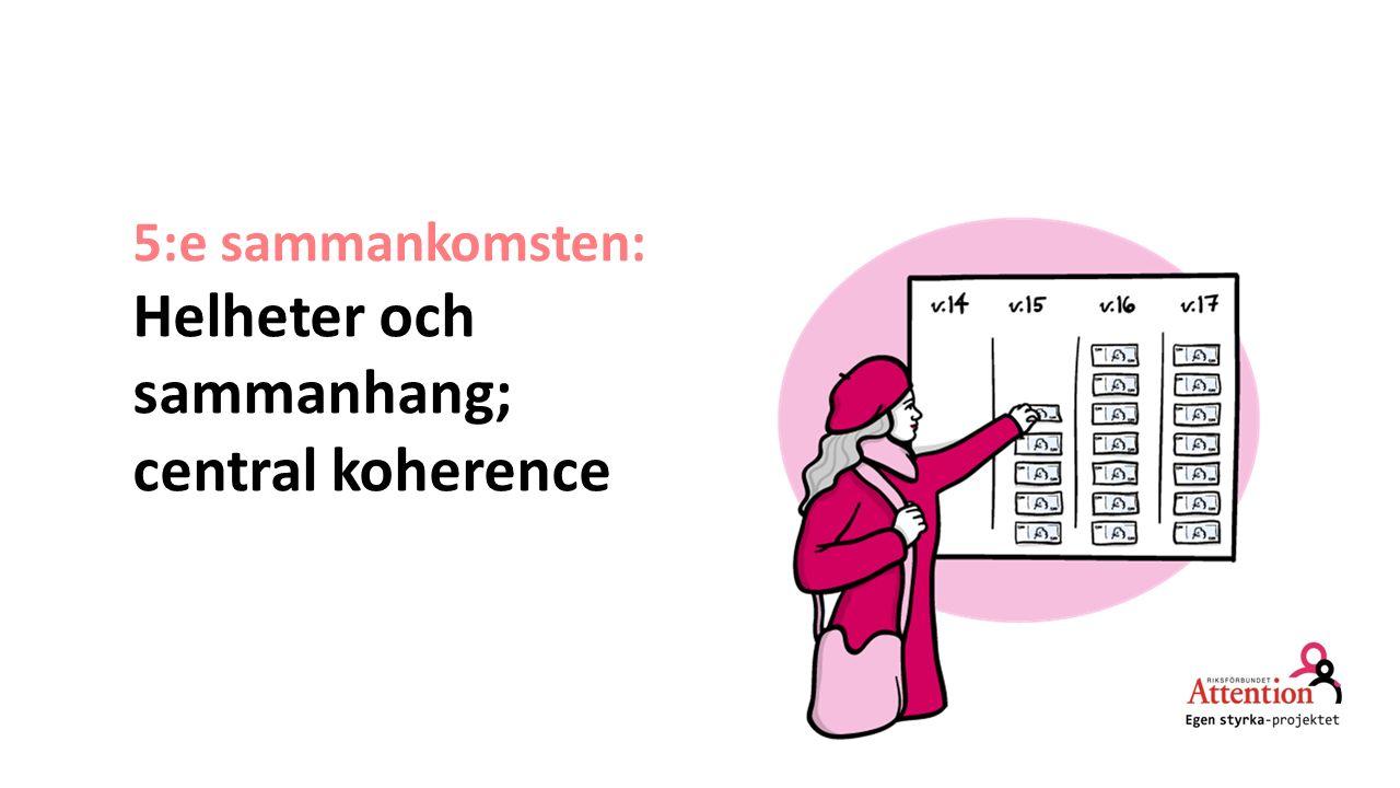 5:e sammankomsten: Helheter och sammanhang; central koherence