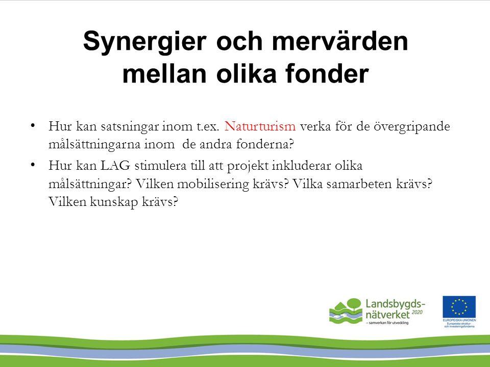 Synergier och mervärden mellan olika fonder Hur kan satsningar inom t.ex. Naturturism verka för de övergripande målsättningarna inom de andra fonderna