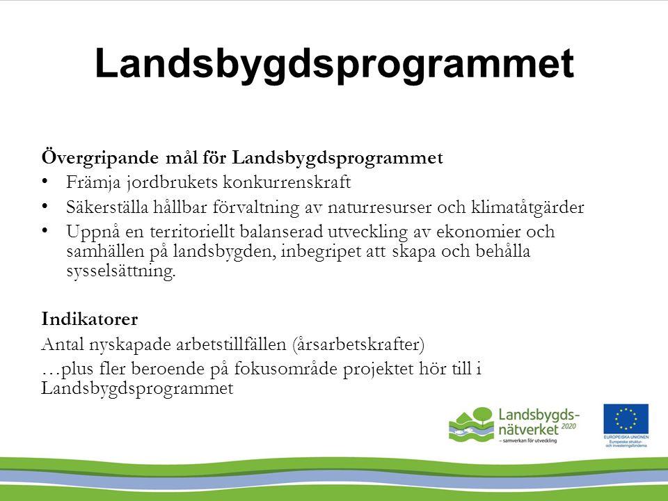 Landsbygdsprogrammet Övergripande mål för Landsbygdsprogrammet Främja jordbrukets konkurrenskraft Säkerställa hållbar förvaltning av naturresurser och