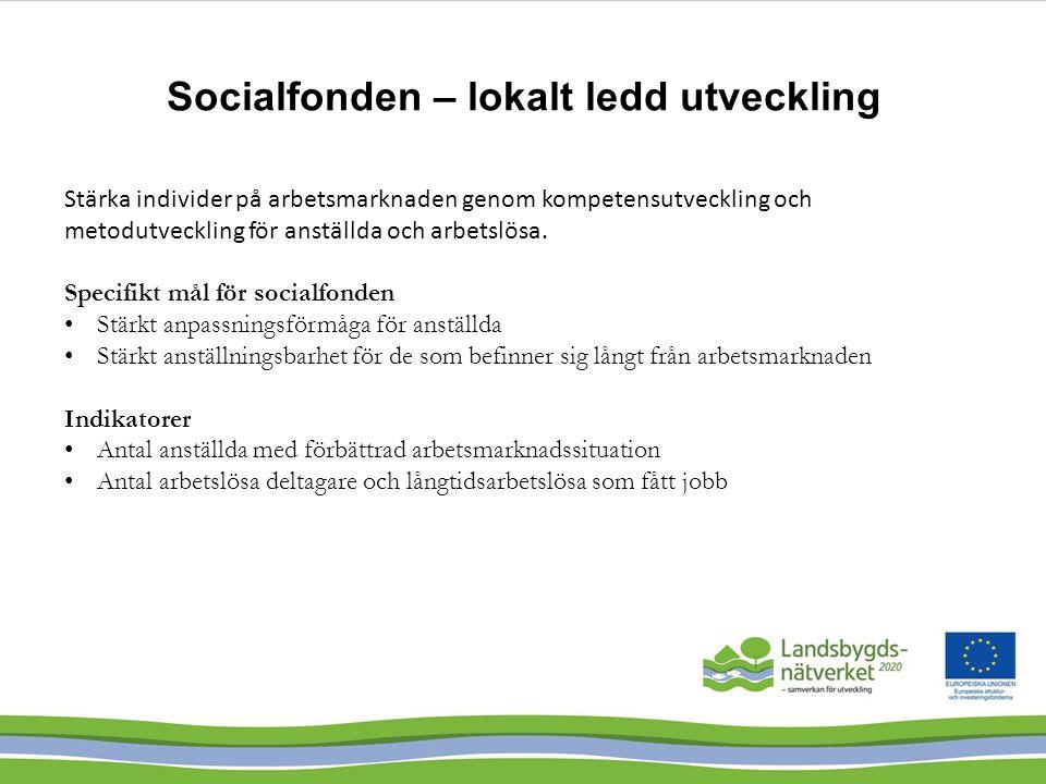 Socialfonden – lokalt ledd utveckling Stärka individer på arbetsmarknaden genom kompetensutveckling och metodutveckling för anställda och arbetslösa.