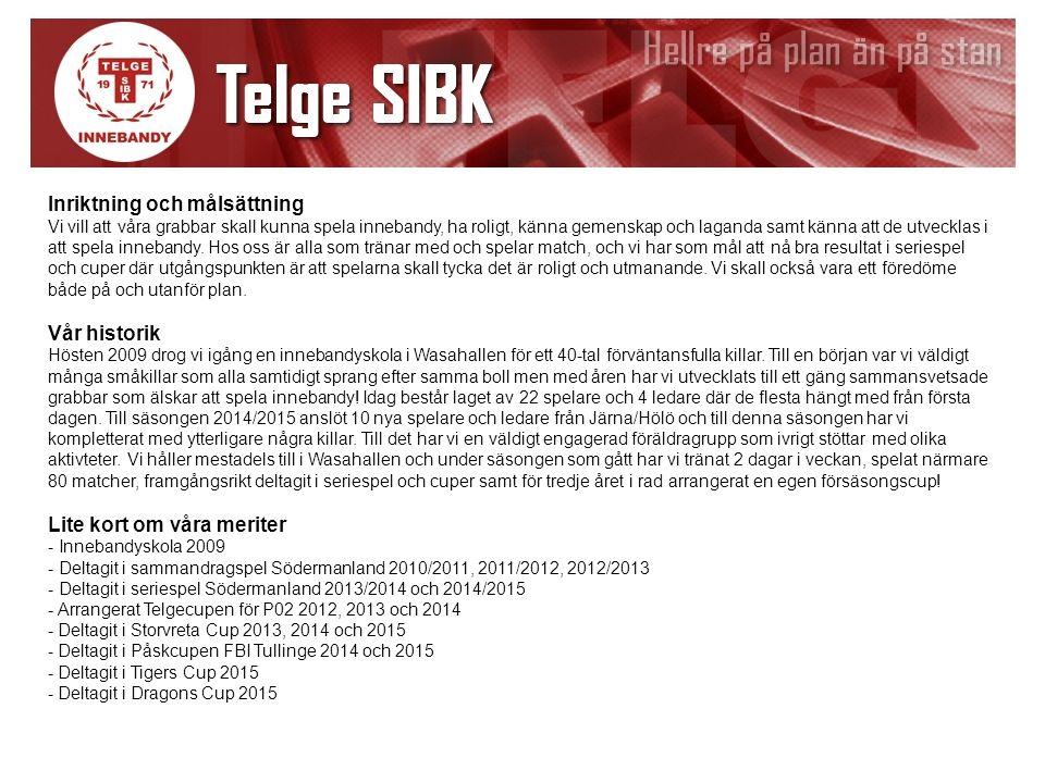 Lagledare/Hemsida Peter Hämäläinen Så här ser vår organisation ut i Telge SIBK P02 Kassör Peter Hämäläinen Sek.ansvarig Roland Huvudtränare Thomas Nilsson Ass.
