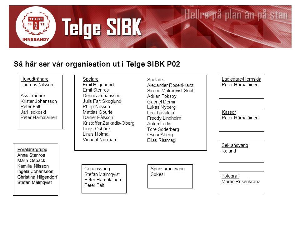 Lagledare/Hemsida Peter Hämäläinen Så här ser vår organisation ut i Telge SIBK P02 Kassör Peter Hämäläinen Sek.ansvarig Roland Huvudtränare Thomas Nil