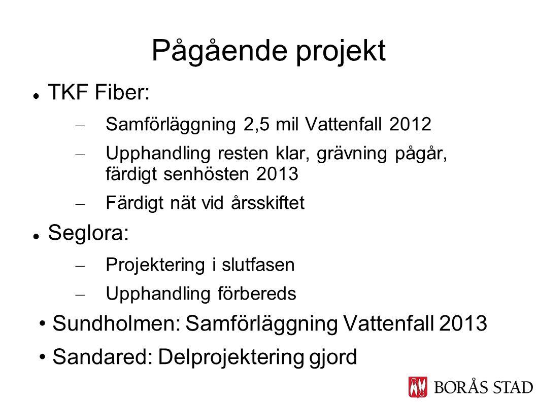 TKF Fiber: – Samförläggning 2,5 mil Vattenfall 2012 – Upphandling resten klar, grävning pågår, färdigt senhösten 2013 – Färdigt nät vid årsskiftet Seg