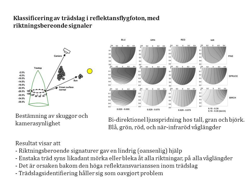 Klassificering av trädslag i reflektansflygfoton, med riktningsbereonde signaler Bi-direktionel ljusspridning hos tall, gran och björk. Blå, grön, röd