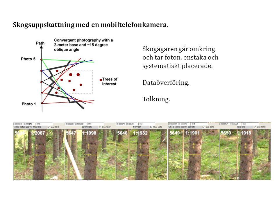 Skogsuppskattning med en mobiltelefonkamera. Skogägaren går omkring och tar foton, enstaka och systematiskt placerade. Dataöverföring. Tolkning.