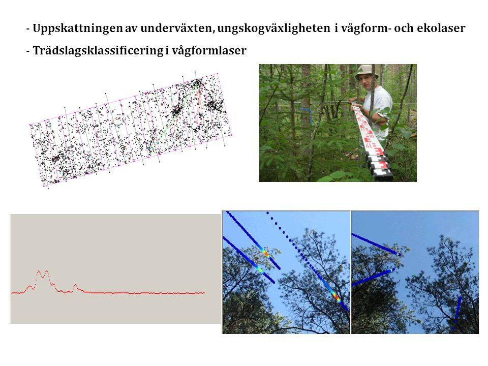 - Uppskattningen av underväxten, ungskogväxligheten i vågform- och ekolaser - Trädslagsklassificering i vågformlaser
