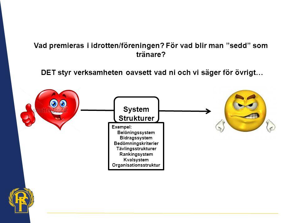 Exempel: Belöningssystem Bidragssystem Bedömningskriterier Tävlingsstrukturer Rankingsystem Kvalsystem Organisationsstruktur System Strukturer Vad premieras i idrotten/föreningen.