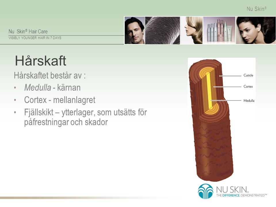 Nu Skin ® Hair Care VISIBLY YOUNGER HAIR IN 7 DAYS Nu Skin ® Hårskaft Hårskaftet består av : Medulla - kärnan Cortex - mellanlagret Fjällskikt – ytter