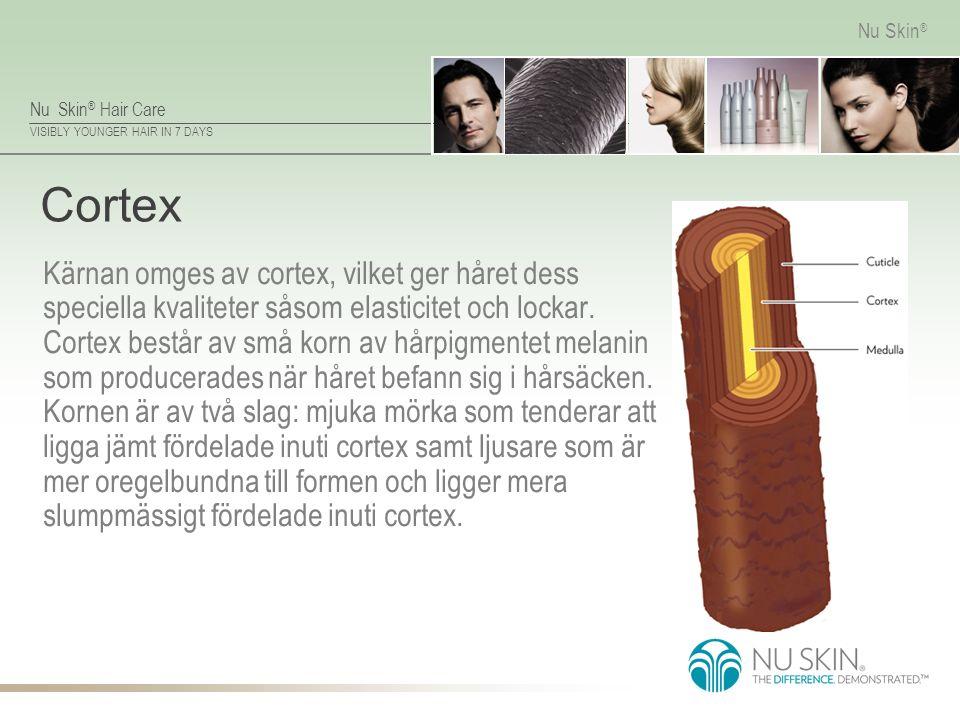 Nu Skin ® Hair Care VISIBLY YOUNGER HAIR IN 7 DAYS Nu Skin ® Cortex Kärnan omges av cortex, vilket ger håret dess speciella kvaliteter såsom elasticit