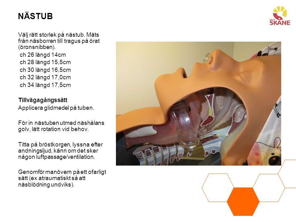 NÄSTUB Välj rätt storlek på nästub. Mäts från näsborren till tragus på örat (öronsnibben). ch 26 längd 14cm ch 28 längd 15,5cm ch 30 längd 16,5cm ch 3
