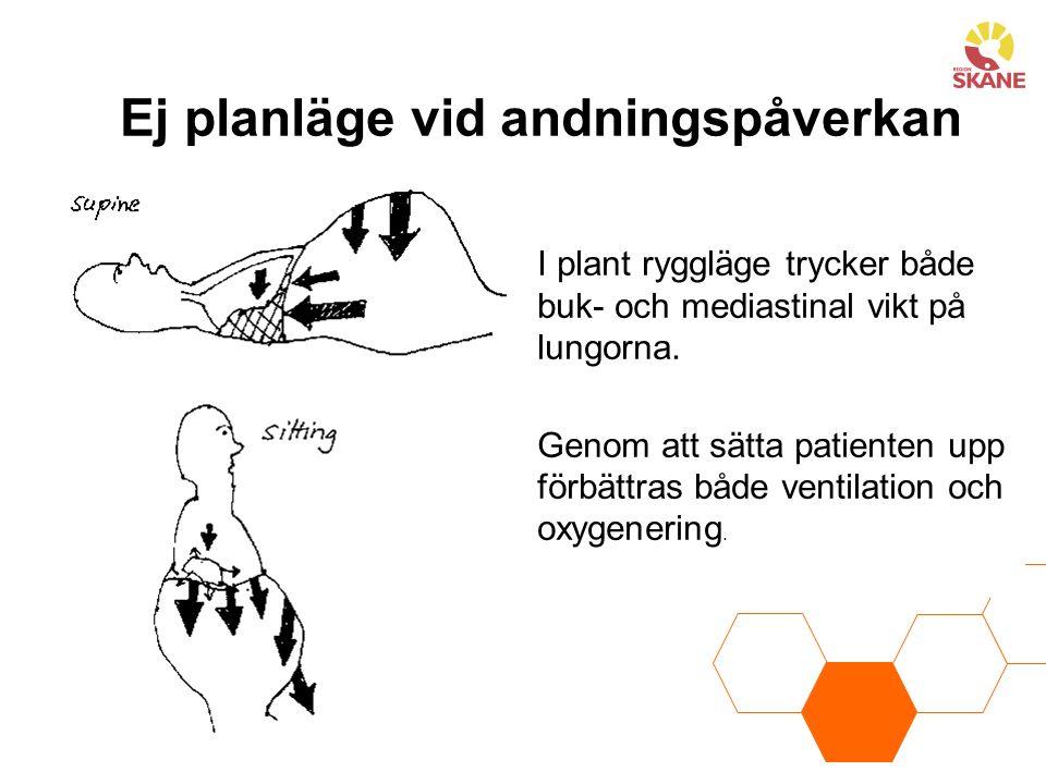 Ej planläge vid andningspåverkan I plant ryggläge trycker både buk- och mediastinal vikt på lungorna. Genom att sätta patienten upp förbättras både ve