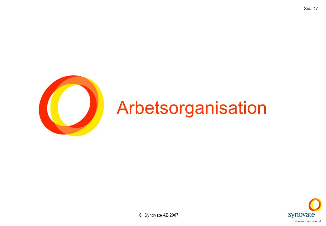 © Synovate AB 2007 Sida 17 Arbetsorganisation