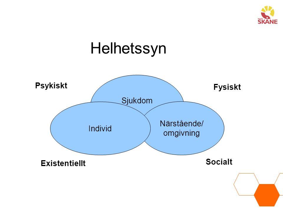 Helhetssyn Psykiskt Fysiskt Existentiellt Socialt Sjukdom Närstående/ omgivning Individ