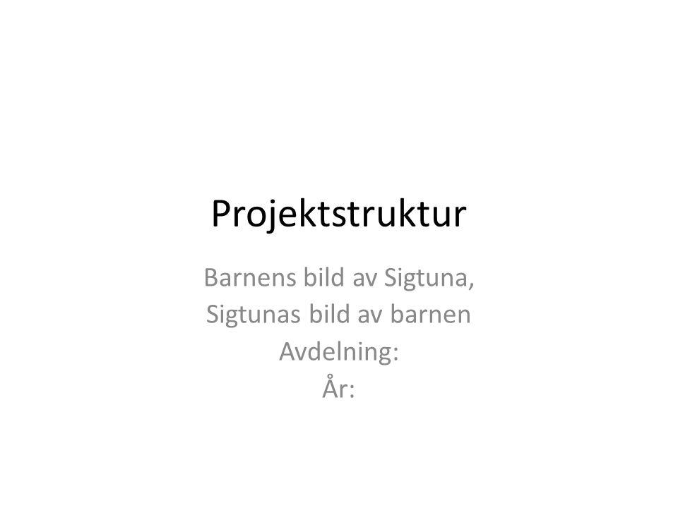 Projektstruktur Barnens bild av Sigtuna, Sigtunas bild av barnen Avdelning: År: