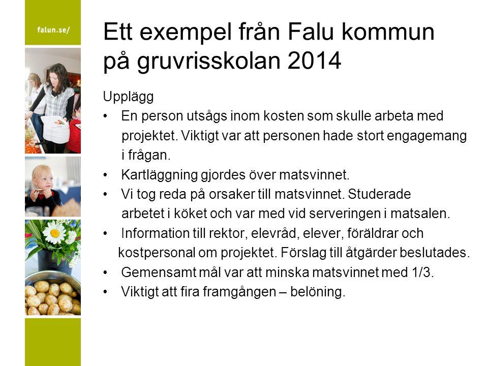 Ett exempel från Falu kommun på gruvrisskolan 2014 Upplägg En person utsågs inom kosten som skulle arbeta med projektet. Viktigt var att personen hade