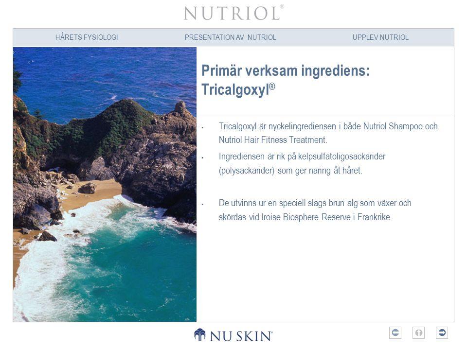 HÅRETS FYSIOLOGIPRESENTATION AV NUTRIOLUPPLEV NUTRIOL  Sekundära ingredienser  Veteprotein (Sodium Cocoyl Hydrolyzed Wheat Protein) och sojaprotein (Hydrolyzed Soy Protein).