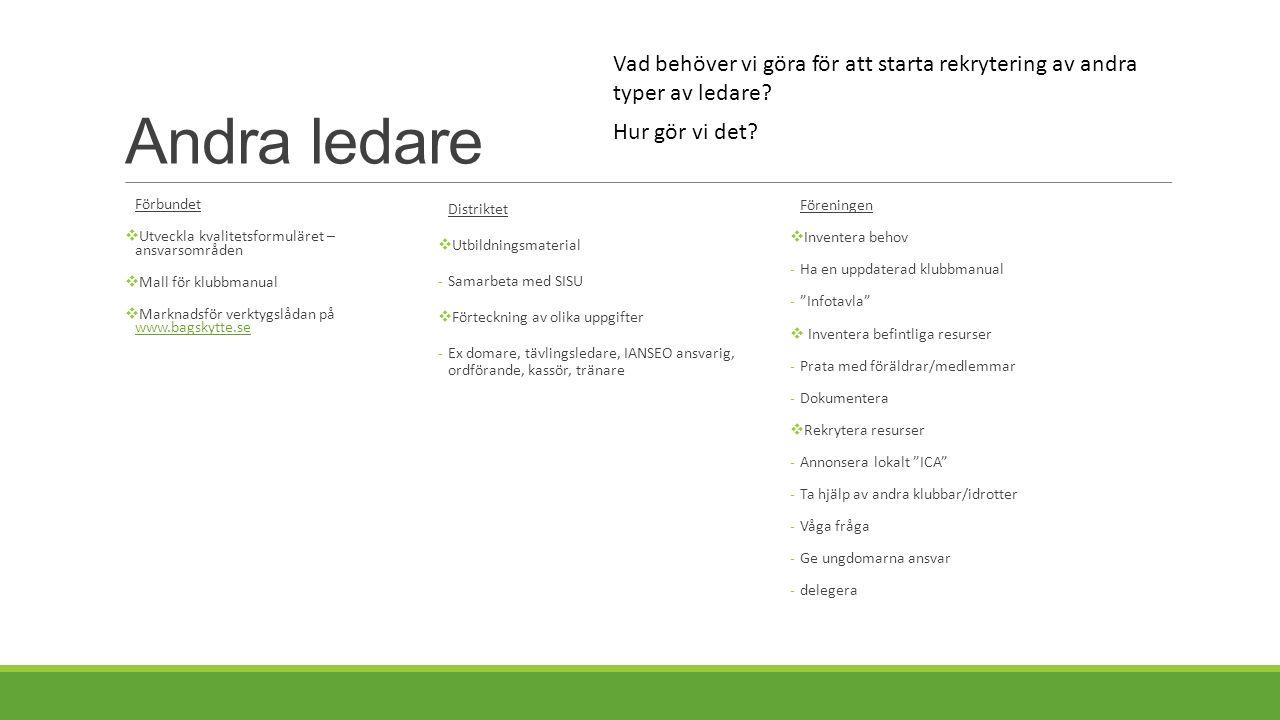 Andra ledare Förbundet  Utveckla kvalitetsformuläret – ansvarsområden  Mall för klubbmanual  Marknadsför verktygslådan på www.bagskytte.se www.bags