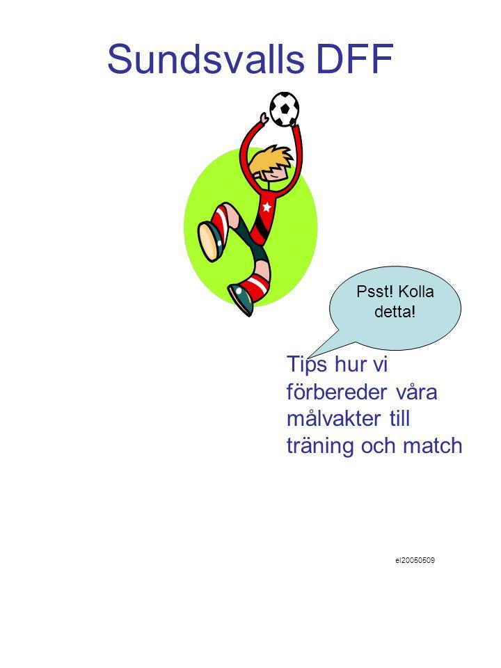 Sundsvalls DFF Tips hur vi förbereder våra målvakter till träning och match el20050509 Psst.