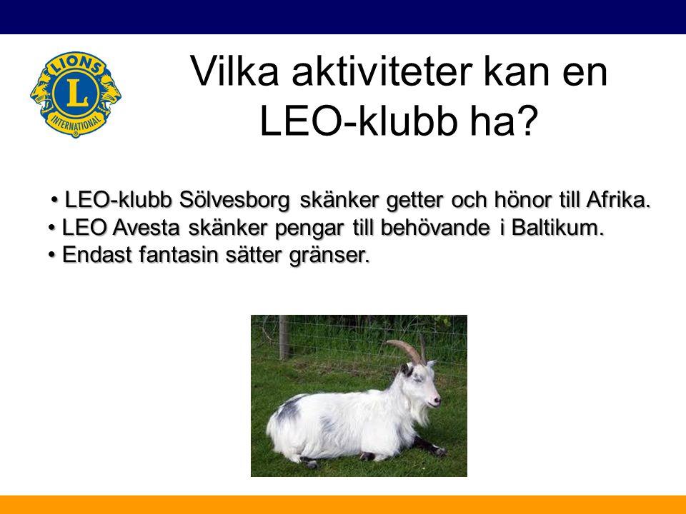 Vilka aktiviteter kan en LEO-klubb ha? LEO-klubb Sölvesborg skänker getter och hönor till Afrika. LEO-klubb Sölvesborg skänker getter och hönor till A