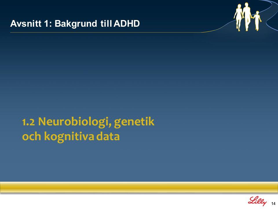 15 ADHD har förmodligen en multifaktoriell etiologi, som inkluderar en kombination av genetiska och miljömässiga riskfaktorer: –Cirka 80 % av ADHD:s etiologi är kopplad till genetiska faktorer –Olika miljöfaktorer kan också bidra som sekundära orsaker Potentiella etiologiska faktorer associerade med ADHD GruppTidEtiologiska faktorer GenetiskaMutationer i generna för dopaminreceptorer och dopamintransportörer Miljömässiga Prenatalt Avvikande utveckling av hjärnan, kromosomanomali, virus, anemi, hypotyreos, jodbrist, exponering för missbruksdroger (t.ex.