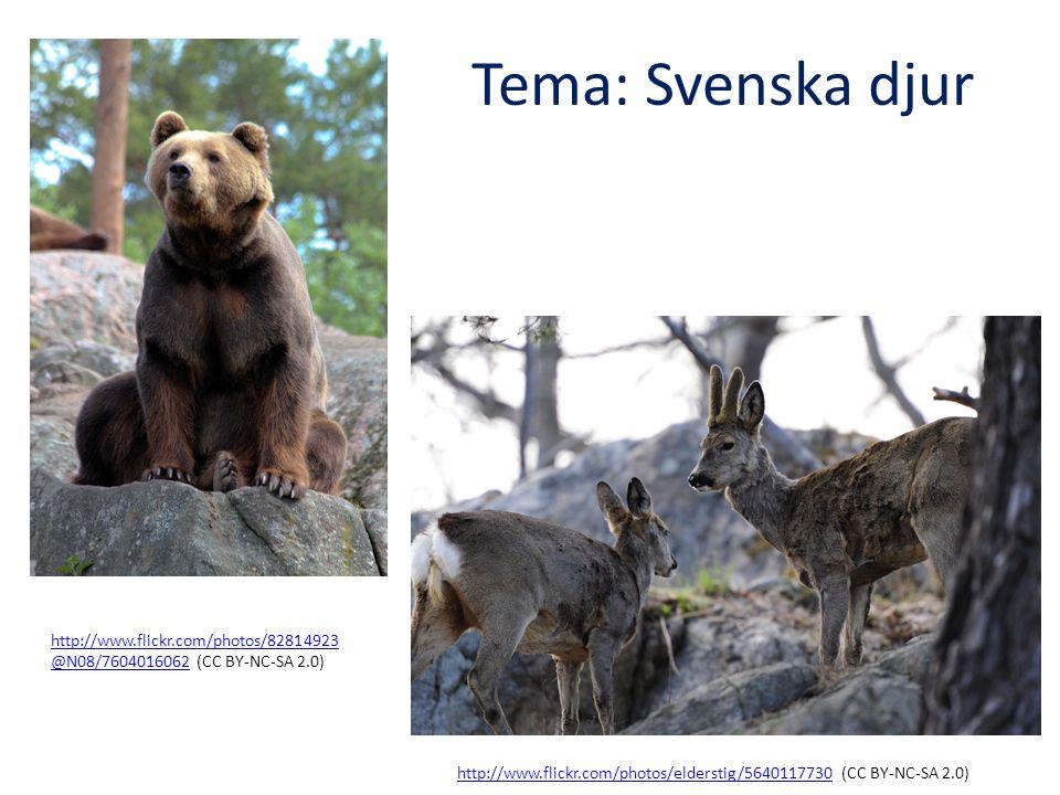 Tema: Svenska djur http://www.flickr.com/photos/elderstig/5640117730http://www.flickr.com/photos/elderstig/5640117730 (CC BY-NC-SA 2.0) http://www.flickr.com/photos/82814923 @N08/7604016062http://www.flickr.com/photos/82814923 @N08/7604016062 (CC BY-NC-SA 2.0) Beskrivande text genre Förmågor, Lgr 11, sva Urskilja språkliga strukturer och följa språkliga normer, formulera sig och kommunicera i tal och skrift, läsa och analysera skönlitteratur och andra texter för olika syften Förmågor, Lgr 11, biologi använda biologins begrepp, modeller och teorier för att beskriva naturen.