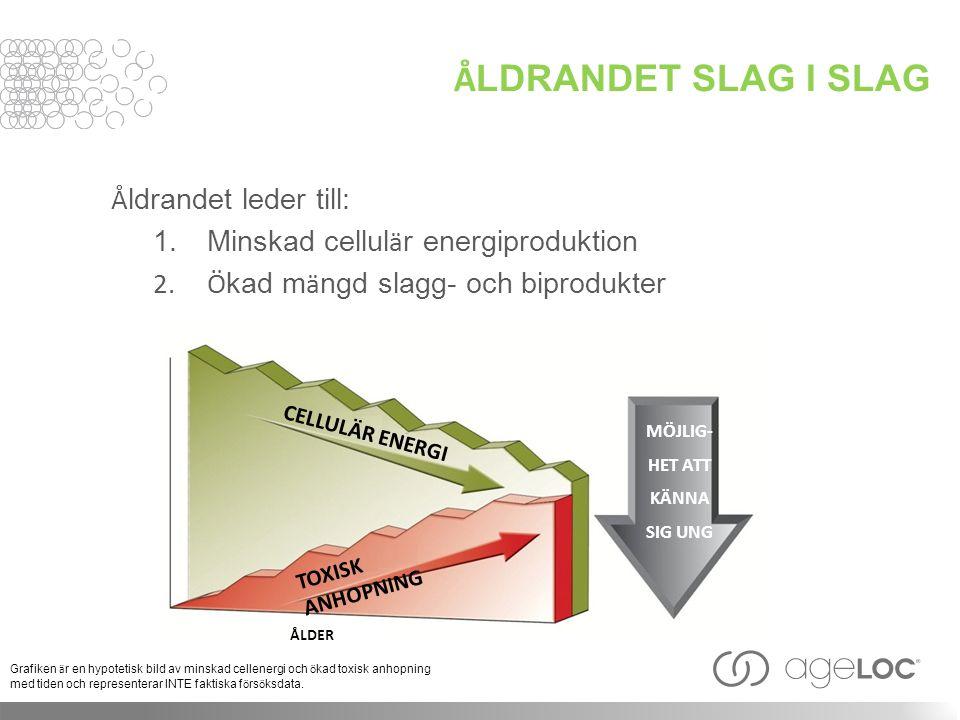 Å LDRANDET SLAG I SLAG Å ldrandet leder till: 1. Minskad cellul ä r energiproduktion 2.Ö kad m ä ngd slagg- och biprodukter Grafiken ä r en hypotetisk