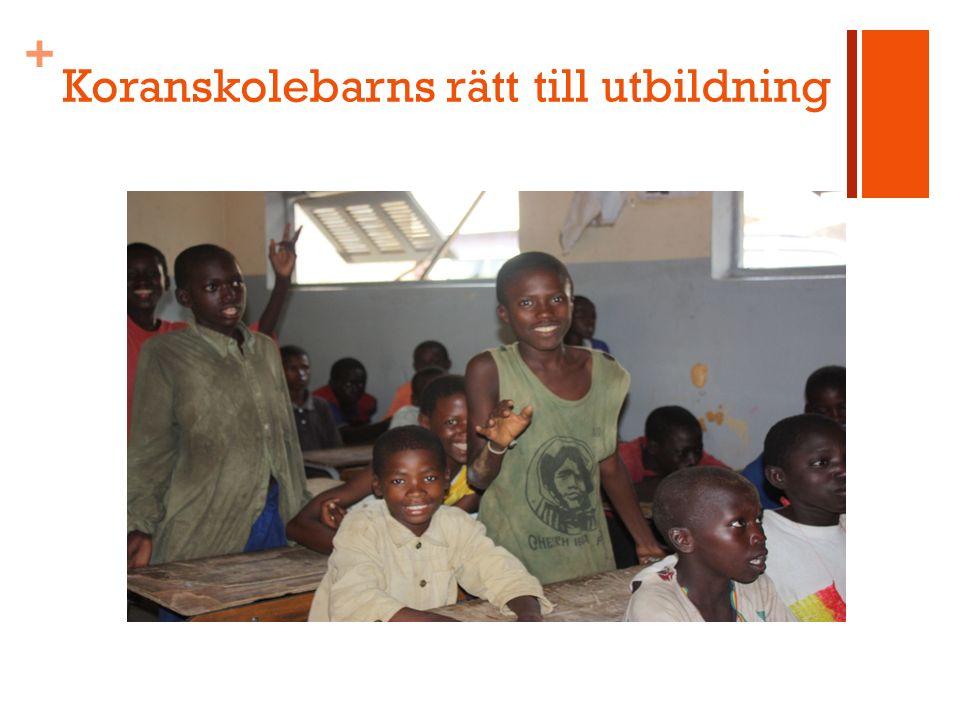 + Koranskolebarns rätt till utbildning
