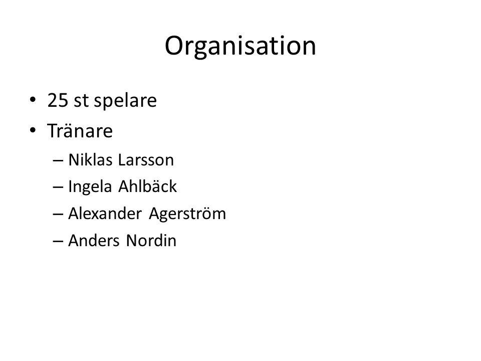 Organisation 25 st spelare Tränare – Niklas Larsson – Ingela Ahlbäck – Alexander Agerström – Anders Nordin
