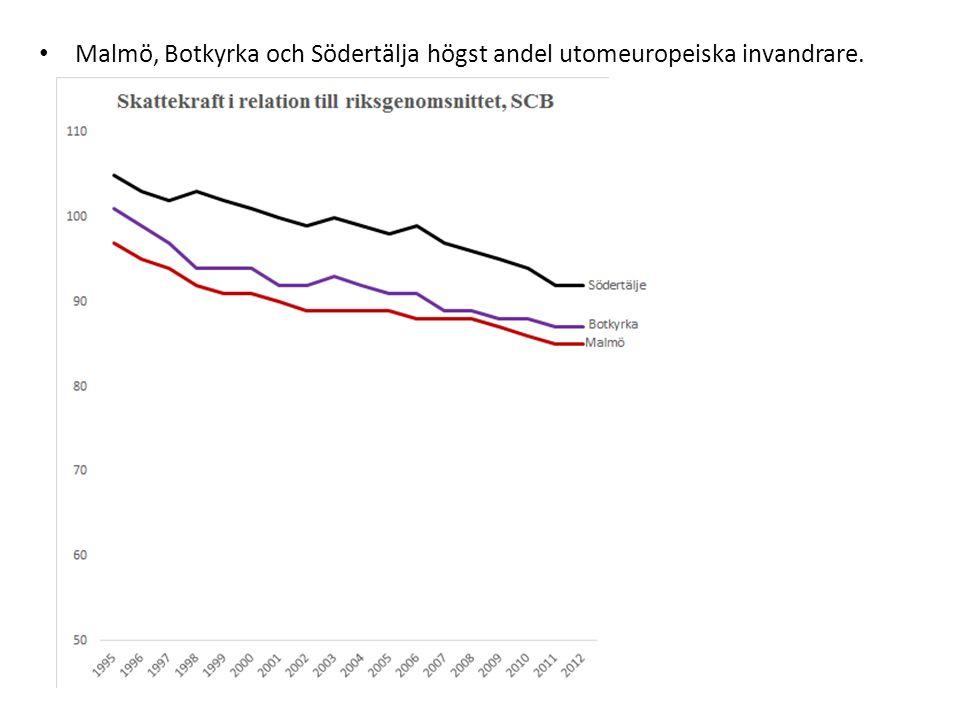 Malmö, Botkyrka och Södertälja högst andel utomeuropeiska invandrare.