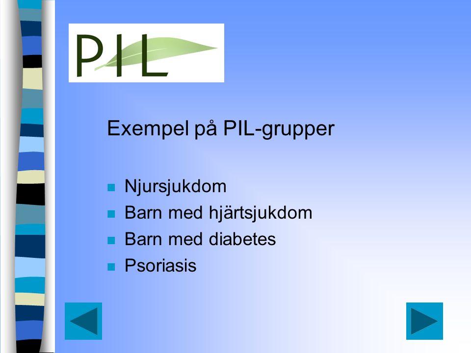 Exempel på PIL-grupper n Njursjukdom n Barn med hjärtsjukdom n Barn med diabetes n Psoriasis