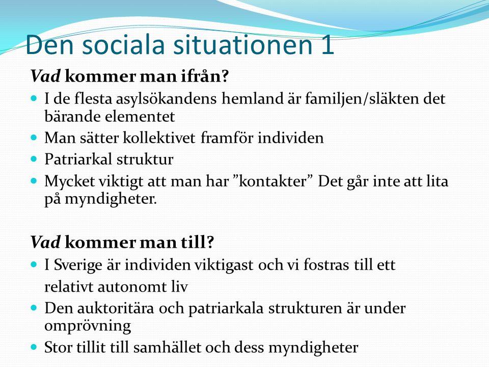 Den sociala situationen 2 Man flyttar inte från sin familj (den finns alltid med i känslolivet) Familjeförlust, familjeamputation Känsla av övergivenhet, förlust av socialt kapital Okunnighet i kontakt med institutioner Ensamhet Språkbegränsning, brister i skolgången