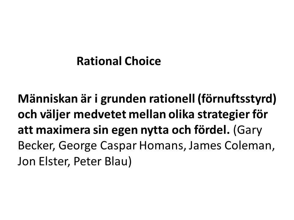 Rational Choice Människan är i grunden rationell (förnuftsstyrd) och väljer medvetet mellan olika strategier för att maximera sin egen nytta och fördel.