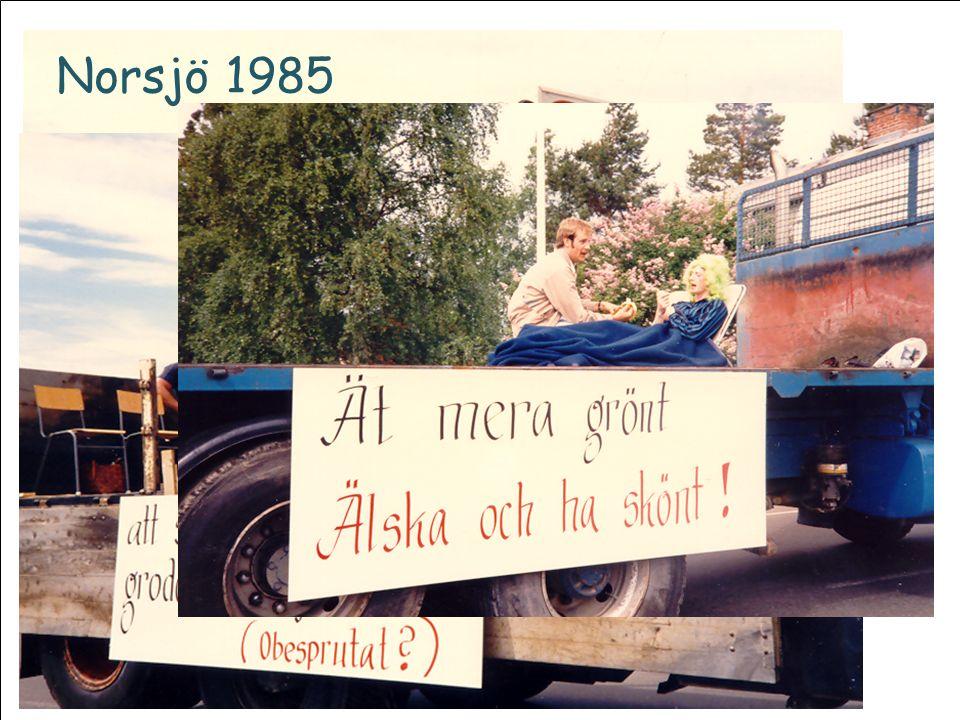 Norsjö 1985